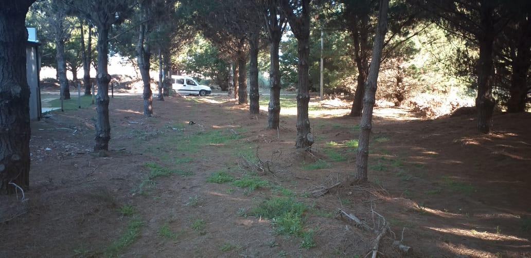 Morrongiello Propiedades - Santa Fe y Av 9 de Julio