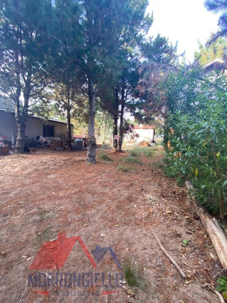 Morrongiello Propiedades - Pasaje 1 y Calle 20